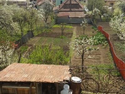 Casa individuala, cartierul Dambul Rotund